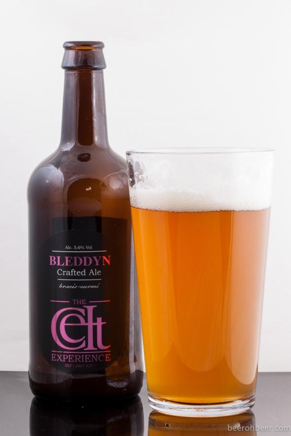Celt Experience - Bleddyn